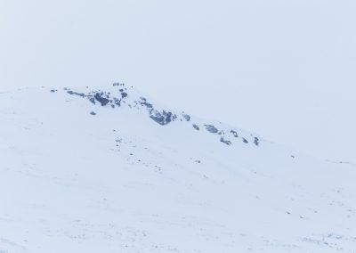 Klimbing the peak next to Storkvelvbu